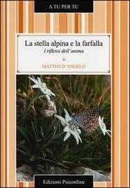 Il libro di Matteo D'Angelo