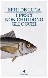 I pesci non chiudono gli occhi. I ricordi del passato nel romanzo di formazione