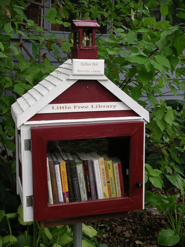 """Ai nostri microfoni, Richard Brooks: cos'è e come nasce il progetto """"Little Free Library"""""""
