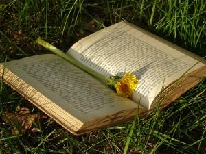 Teletrasporti letterari: quale libro vorresti vivere?