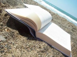 Estate 2013: i libri più hot