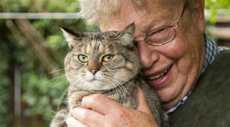 Il vecchio e il gatto. Una storia d'amore